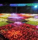 とっとり花回廊 イルミネーション2015が開幕、中四国最大級140万球