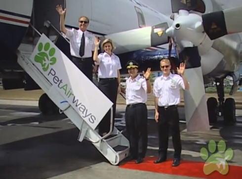 ペット専用の飛行機、ペットエアラインがアメリカでスタート!