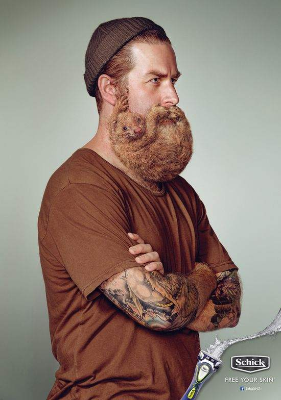 シック 髭がフェレットになっているポスター