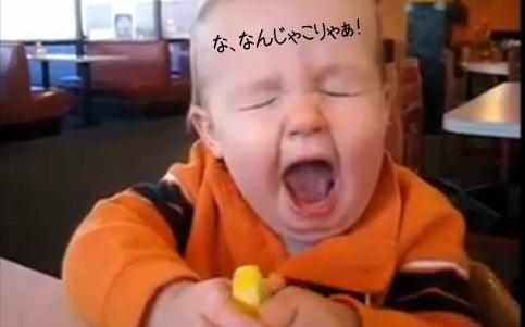 初めてのレモン!刺激的な初体験に赤ちゃんの表情は...