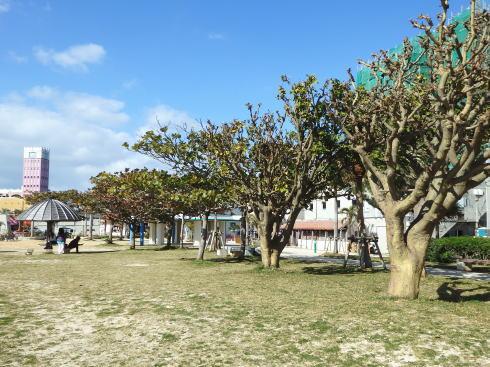 北谷公園サンセットビーチ 画像2