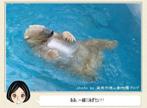 氷を大事そうに抱いて、プカプカ浮かぶホッキョクグマの姿がカワイイと話題に