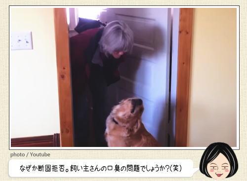 キスは断固拒否する犬、飼い主にツレナイ可愛すぎるワンコたち