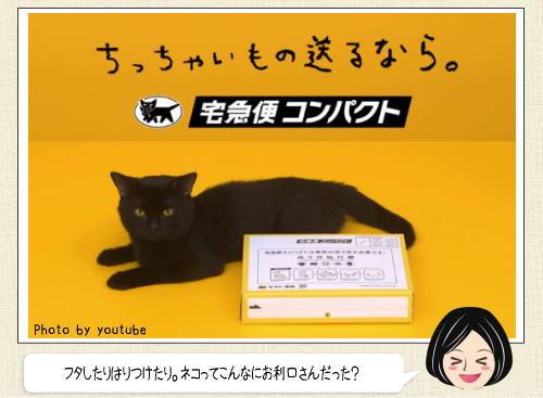 ネコも組立てられるのだ!ヤマト運輸の黒ネコを使った可愛すぎるCM動画