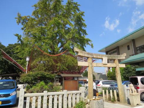 下関 亀山八幡宮の「お亀明神」 外観2