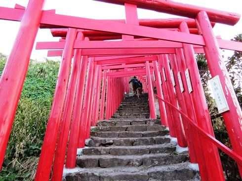 元乃隅稲成神社、赤い鳥居のトンネルを下る