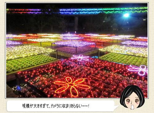 とっとり花回廊 イルミネーション2015開幕、中四国最大級140万球