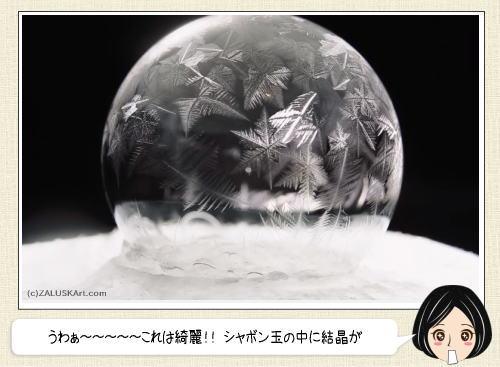 美しく凍るシャボン玉、結晶が魅せてくれる儚いアート