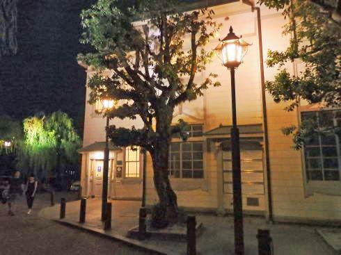 倉敷・美観地区の夜景 画像2