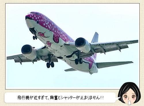 沖縄で飛行機撮影の穴場おすすめスポット!大迫力で戦闘機も真上に