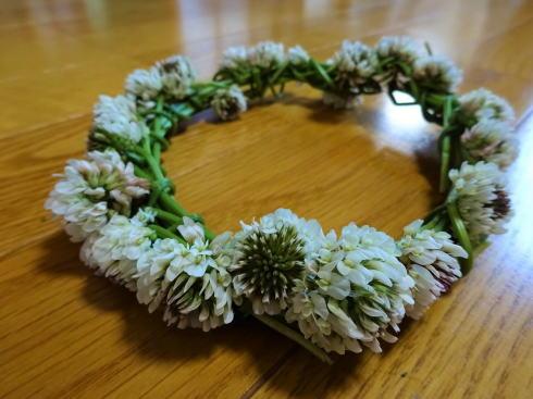 シロツメクサの花冠 画像