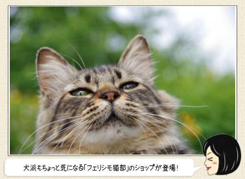 肉球の香りハンドクリーム!?フェリシモ猫部 ポップアップショップで発売