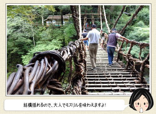 徳島の絶景、かずら橋を渡ってみた!蔓を編みこんで造った橋はスリル満点