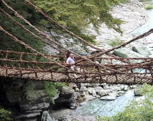 徳島県の絶景、祖谷のかずら橋