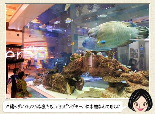 イオンモール沖縄ライカム、館内にプチ水族館がある風景
