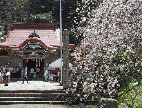 徳佐八幡宮 社殿