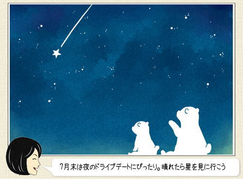 みずがめ座δ流星群、7月30日に極大!夏休みのほしぞら観察に