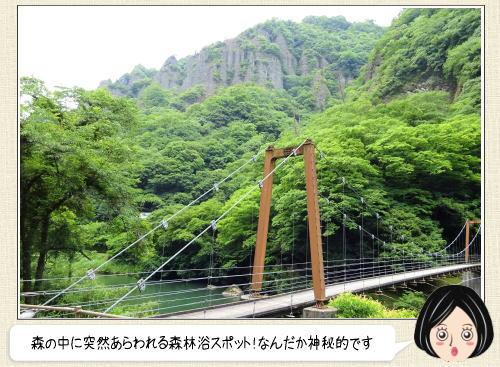 そそり立つ断崖と緑の美しさ!立久恵峡(たちくえきょう)島根・出雲の秘境