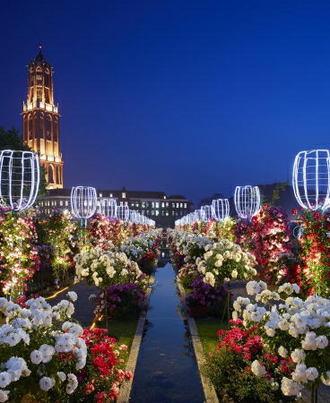 111万本のバラ祭!ハウステンボス史上最大のバラリレー5月から