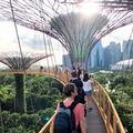都会の異空間・ガーデンズバイザベイは巨大すぎるシンガポールの植物園