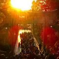 光の道、福岡・宮地嶽神社で「奇跡の夕陽」を見る方法