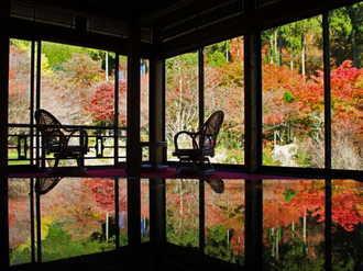 環境芸術の森「逆さ紅葉」で有名な佐賀の秘境に行列