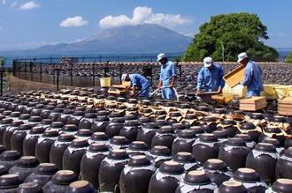 黒酢の壺がズラリと並ぶ、鹿児島・霧島ならではの壺畑が広がる風景