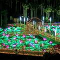 夜の沖縄観光に!東南植物楽園で180万球イルミネーションに包まれ光のお散歩