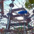 120種類の巨大アスレチックタワー「万博ビースト」大阪の万博記念公園に誕生