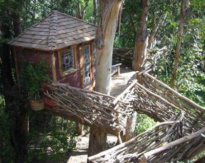 木の上の家4