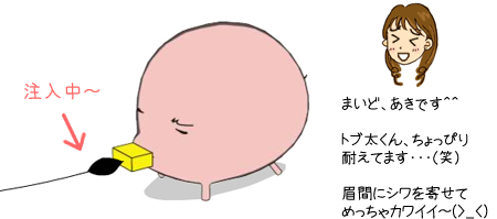 ブーイング.jp トブ太