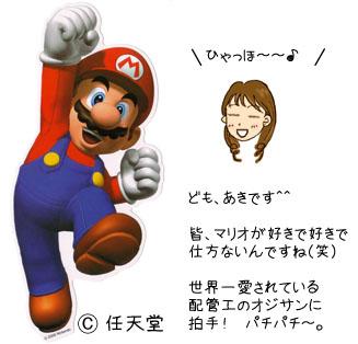 マリオ Wii