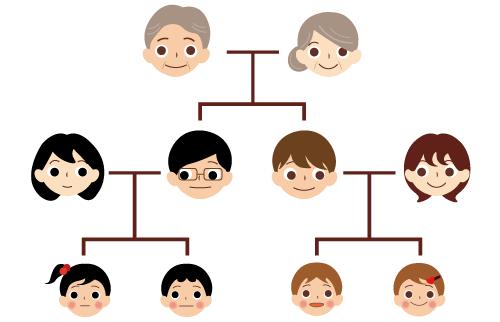 ネットde家系図 家系図 作成サイト