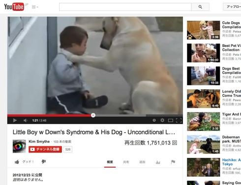 ママ気分で子どもを見守る犬の動画が可愛くてしょうがない