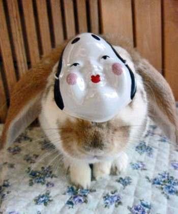 お福さんウサギ