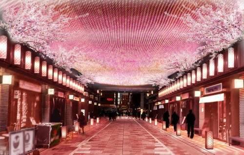 日本橋 桜フェスティバル 花見舞台