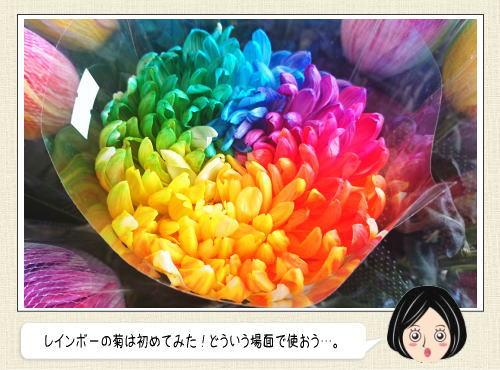 レインボーローズ・菊、1輪でスゴイ存在感を放つ花