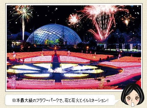 日本最大級のフラワーパークで、花とイルミネーションと花火のアートショー!