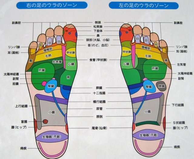 足の裏のツボ 説明