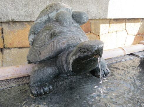 下関 亀山八幡宮 本殿の写真