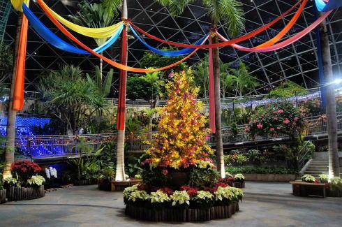 とっとり花回廊 温室のツリー