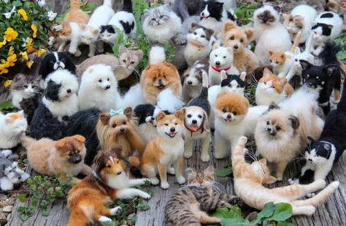 本物みたい、犬や猫のフェルトアートが凄い