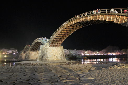 錦帯橋の桜 夜の部1