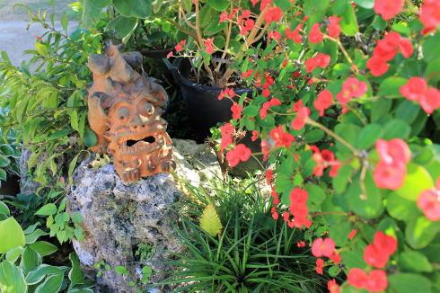 沖縄 カフェくるくま 花たち2