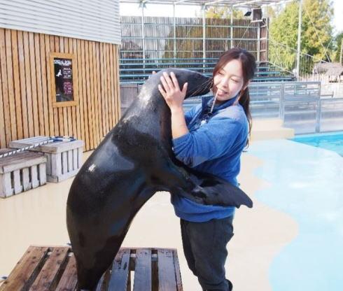 オットセイと熱いハグ!「ぼっち女子」限定、東武動物園でバレンタイン企画