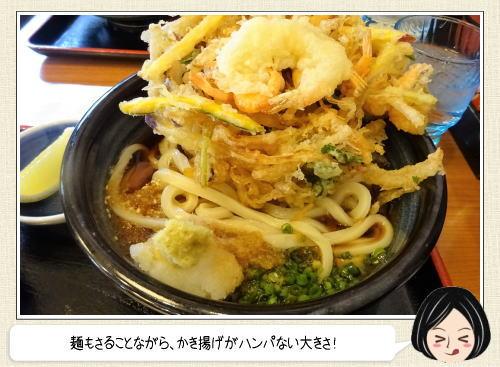 巨大かき揚げにコシのあるモチモチ麺!香川「もり家」讃岐うどんの有名店