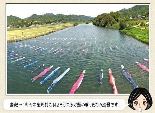 鯉のぼりの川流し、山口県の珍しい「水中鯉のぼり」の風景