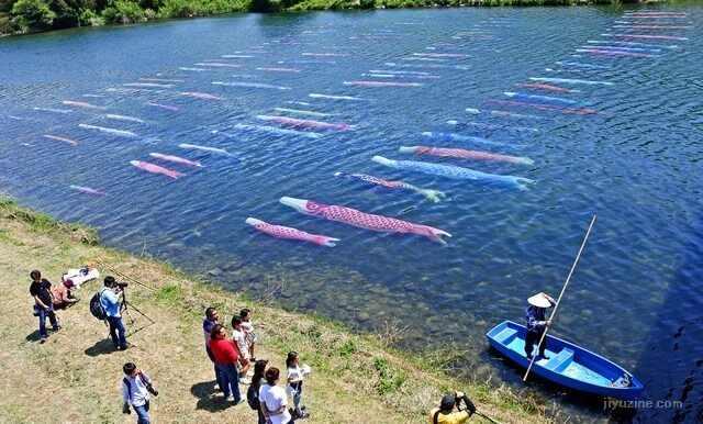 水中を泳ぐこいのぼり「鯉のぼりの川流し」山口県7