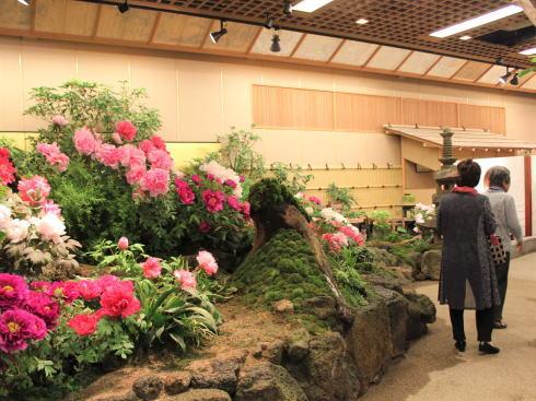 島根 由志園 園内の「牡丹の館」