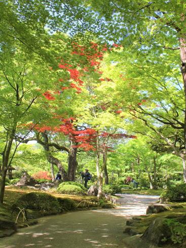 島根 由志園 園内の風景4
